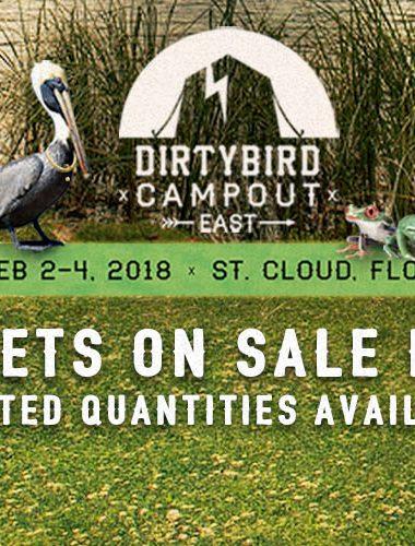 The Dirtybird Family Flocks EAST!
