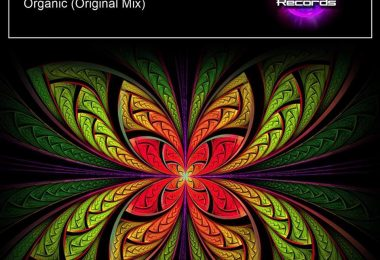 Qhemist – Organic [Let It Out Records]